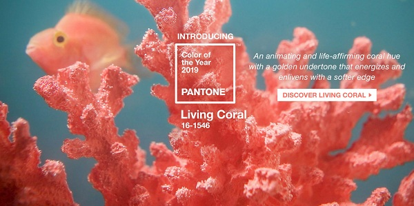 pantone-color-of-the-year-2019-living-coral-homepage-1999x999.jpg